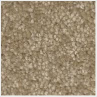 Light Brown Carpet Sample - Flooring Lethbridge
