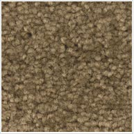 Brown Carpet Sample - Flooring Lethbridge